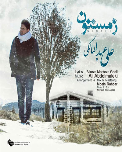 دانلود آهنگ جدید ، فوق العاده زیبا و شنیدنی علی عبدالمالکی به نام زمستون